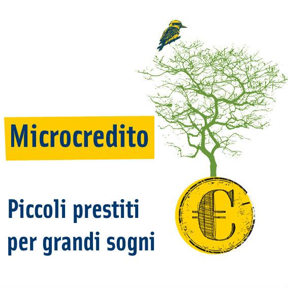 Microcredito 2015